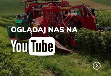 Weremczuk Youtube