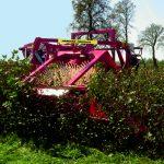 harvester-for-aronia-currants-gooseberry-saskatoon